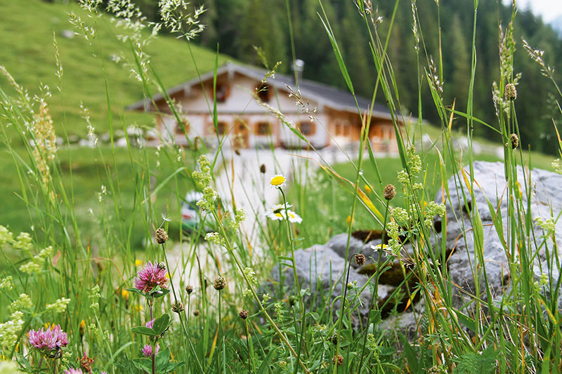 Die Mordau-Alm im Berchtesgadener Land.